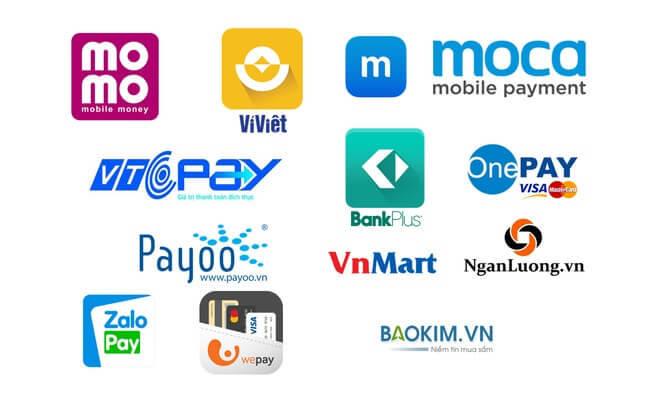 Ở Việt Nam đã có rất nhiều loại ví điện tử